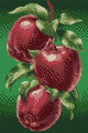 КДИ-0045 Набор алмазной вышивки Яблоки, фото 2