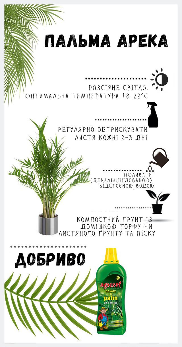 удобрение для пальмы