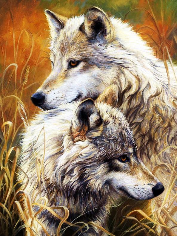 КДИ-0257 Набор алмазной вышивки Пара прекрасных волков