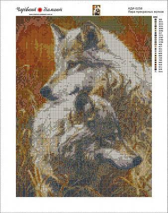 КДИ-0257 Набор алмазной вышивки Пара прекрасных волков, фото 2