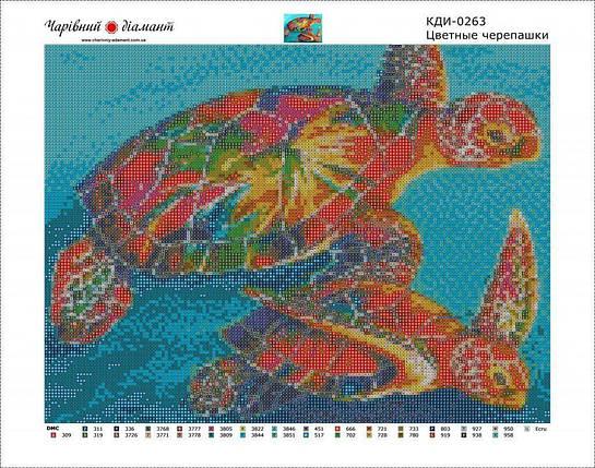 КДИ-0263 Набор алмазной вышивки Цветные черепашки, фото 2