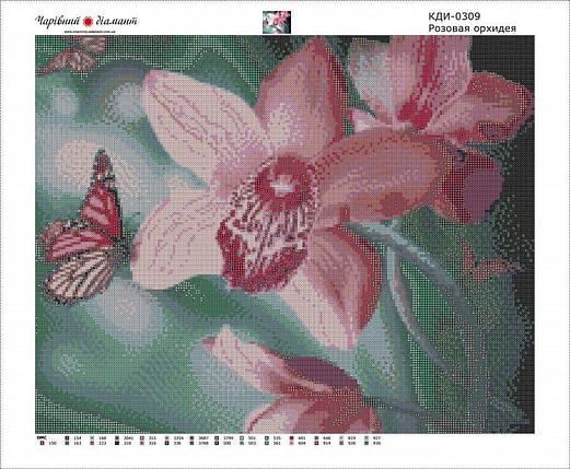 КДИ-0309 Набор алмазной вышивки Прекрасная орхидея, фото 2