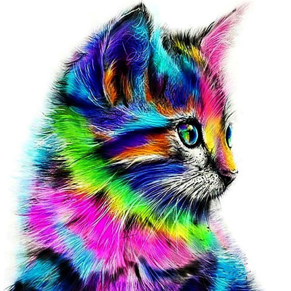 КДИ-0603 Набор алмазной вышивки Радужный котик