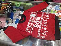 Свитшот детский Новогодний family look для мальчика р.92 - 128