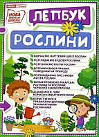 НУШ Міні-лепбук. Рослини, фото 1