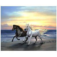 Алмазная мозаика Пара лошадей 30x23 см J518