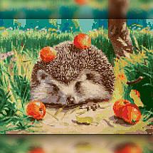 TWD20034 Набор алмазной вышивки Ёжик с яблоками, фото 2
