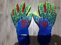 Перчатки вратаря Adidas Predator Pro DN8581