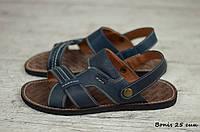 Мужские кожаные сандалии, босоножки Bonis  (Реплика)  (Код: Bonis 25 син  ) ► [39,40,41,42,43,44,45], фото 1