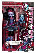 Джейн Булитл Базовая с питомцем Кукла Монстер Хай Monster High Jane Boolittle Doll, фото 10