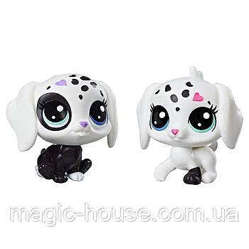 Littlest Pet Shop Собачки Маленький зоомагазин Black & White Puppy BFFs