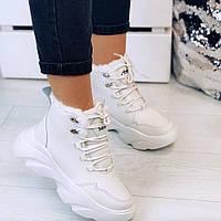 Кроссовки зимние на шнурках, фото 1
