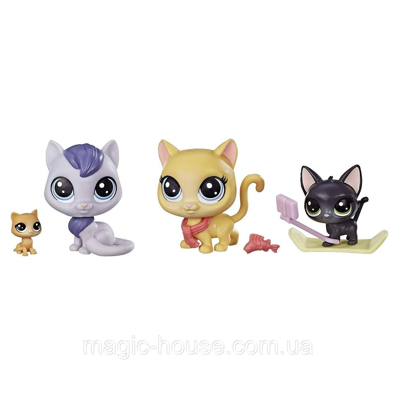 Игровой набор Littlest Pet ShopМаленький зоомагазинSnowboarding Kitty Crew Оригинал от Hasbro