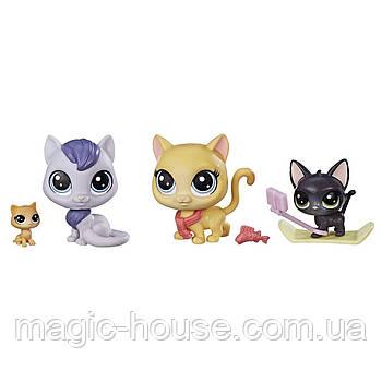 Ігровий набір Littlest Pet Shop Маленький зоомагазин Snowboarding Kitty Crew Оригінал від Hasbro