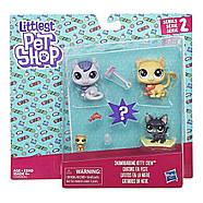 Игровой набор Littlest Pet ShopМаленький зоомагазинSnowboarding Kitty Crew Оригинал от Hasbro, фото 2