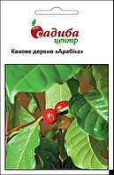 Семена кофейное дерево Арабика 1 г, Hem Zaden