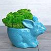 Цветочное кашпо Кролик Зайчик, зеленый, фото 3
