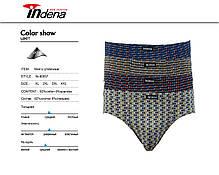 Чоловічі плавки стрейчеві «INDENA» Арт.90057, фото 3