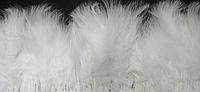 Перьевая тесьма из перьев лебедя.Цвет на выбор