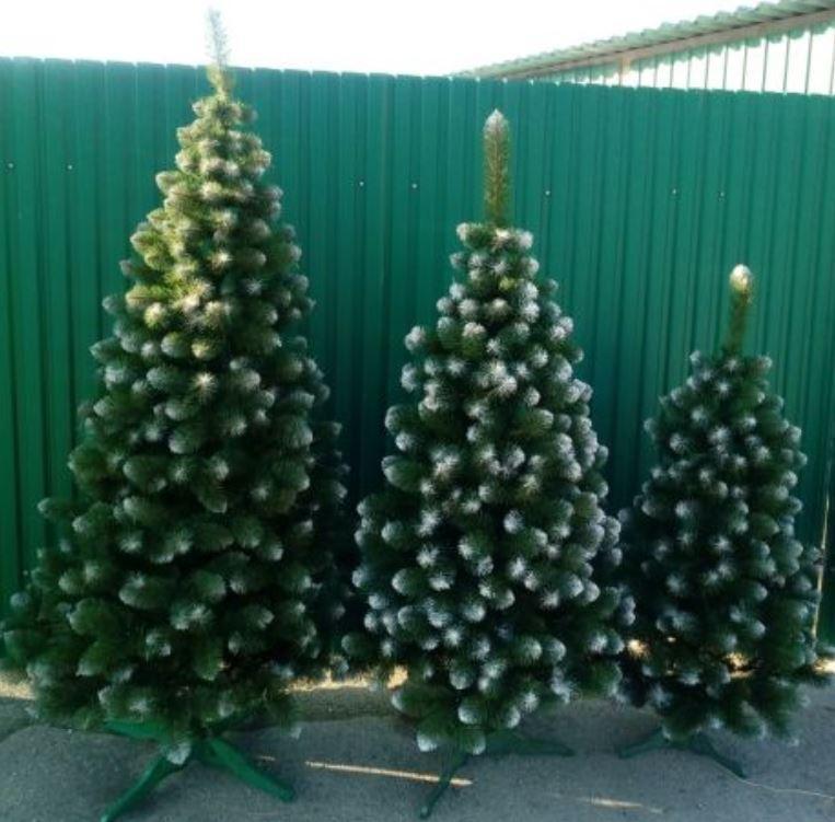 Новогодняя искусственная елка сосна 2,2 м с белыми кончиками (ПВХ) новорічна штучна ялинка з білими кінчиками