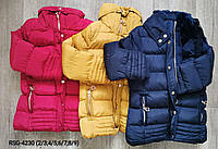 Куртки еврозима для девочек Nature 2/3-8/9 лет, фото 1