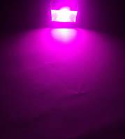 Светодиодный фитопрожектор PREMIUM SL-10G 10W IP65 (full spectrum led) Код.58582