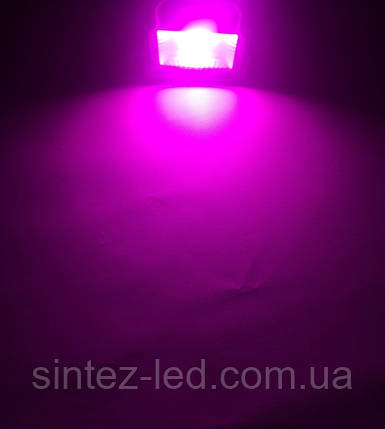 Светодиодный фитопрожектор PREMIUM SL-10G 10W IP65 (full spectrum led) Код.58582, фото 2