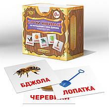 Мастер Картки Домана  №1 (укр)