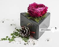 Необычный подарок - стабилизированная роза в бетоне Blossom mini, S45