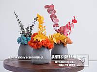 """Необычный подарок. Композиция со стабилизированным мхом """"Eucalyptus"""" от компании """"Artis Green"""", S17"""