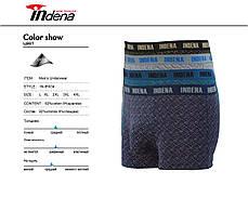 Мужские стрейчевые боксеры «INDENA»  АРТ.95034, фото 2