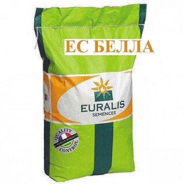 Семена подсолнуха Белла / Евралис / Насіння соняшнику Белла