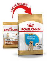 Сухой корм 3 кг для щенков породы Лабрадор Роял Канин / LABRADOR PUPPY Royal Canin