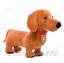 Мягкая игрушка щенок Товарищ Такса Paw Patrol