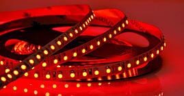 Светодиодная LED лента гибкая 12V PROLUM IP20 2835\120 Standard, Красный