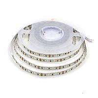Светодиодная LED лента гибкая 12V PROLUM™ IP20 2835\120 PRO, Белый (5500-6000К)