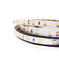 Светодиодная LED лента гибкая 12V PROlum ™ IP20 2835\60 Standard PLUS, Белый (5500-6000К)