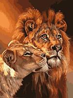 Картина по номерам Львы Царственная пара (VK033) 30 х 40 см