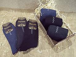 Махровые мужские носки Версаль/ Червоноград