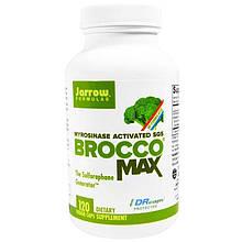 """Экстракт семян брокколи Jarrow Formulas """"BroccoMax"""" усиленный микрозиназой (120 капсул)"""