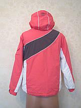 Лыжная куртка Alive (164), фото 3