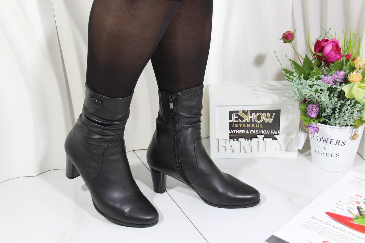 Жіночі черевики Battine B659