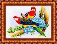 Схема на габардине для вышивки бисером Попугаи