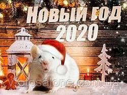 ГОТУЄМОСЯ ДО НОВОГО 2020 РОЦІ!!!