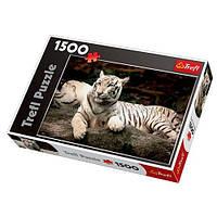 Пазл Бенгальский тигр 1500 дет.