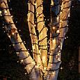 Гирлянда уличная Нить Alphatrade  10 м, 100 диодов (Проф), черный провод, цвет белый теплый, с мерцанием flash, фото 3