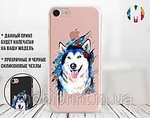 Силиконовый чехол для Apple Iphone 8 Красочный хаски (4022-2000)