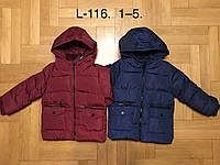 Куртка утепленная для мальчиков, F&D, 3,4 лет,  № L-116