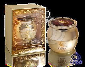 Увлажняющий крем с концентрированным содержанием экстракта улитки Snail Elastic Embellish Moisturizing Cream