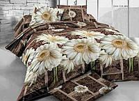 Семейное постельное белье-Белые ромашки